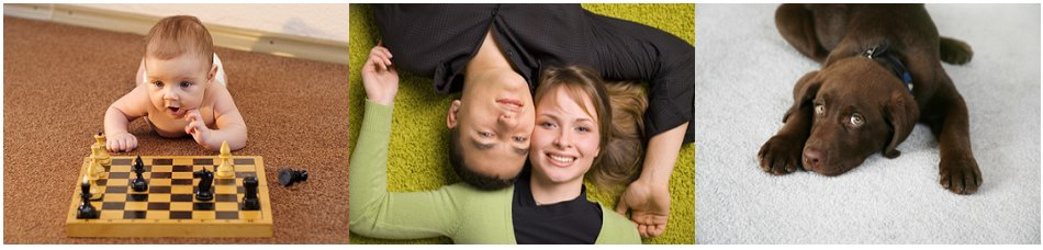 Professional Carpet Cleaning in Maryland