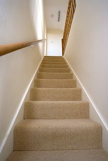 Maryland Carpet Cleaning Services